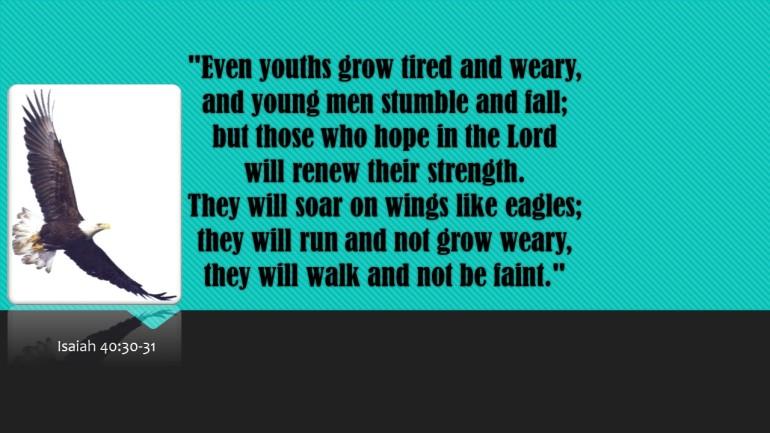Eagle Scripture 1