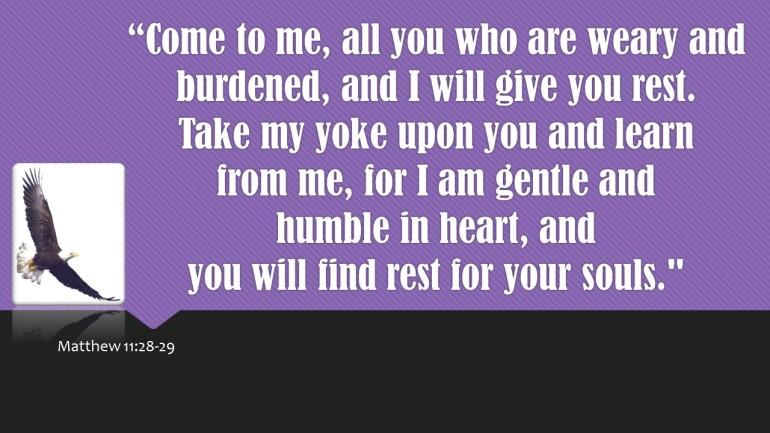 Eagle Scripture 3